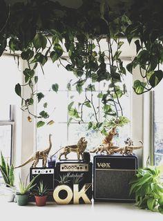 Pretty botanical sitting nook (via hopeleigh's instagram)