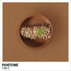 Pantone Food Like and Repin. Thx Noelito Flow. http://www.instagram.com/noelitoflow