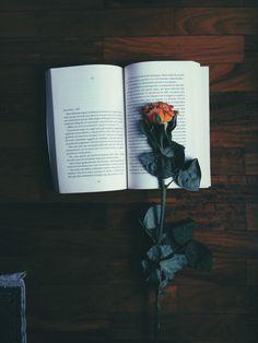 #libri #book #rosa #home #love
