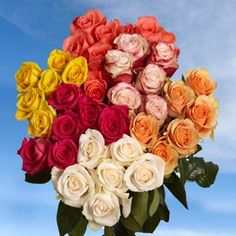 BESTSELLER! Fresh Cut Roses 50 Assorted Roses - 2... $40.00