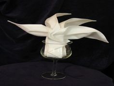 Serviette Napkin Folding, Sydney Opera Fan In Wine Glass Recipe - Food.com