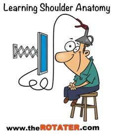 Shoulder anatomy videos help you understand where your shoulder muscles, bones, tendons and ligaments are . here are 2 great videos Shoulder Anatomy, Scapula, Shoulder Muscles, Great Videos, Animation, Learning, Muscles Of The Shoulder, Studying, Teaching