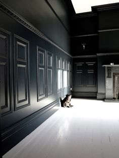 47 Park Avenue - FARROW & BALL OFF BLACK PAINTED PANELING WITH FARROW AND BALL GREAT WHITE PAINTED FLOOR BOARDS