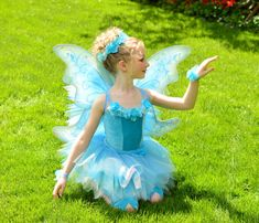 Deluxe Periwinkle Fairy Costume    Includes 6 pieces:    ~ Sleeveless Leotard Bodice  ~ Full Tutu  ~ Rose Garland Headband  ~ 2 Convertible Rose