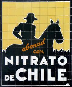 Nitrato de Chile 1