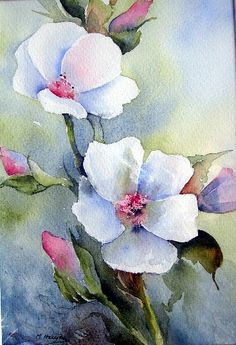 Apple Blossom Watercolor video Note to self. Description f Watercolor Video, Watercolor Cards, Watercolor And Ink, Watercolour Painting, Watercolor Flowers, Watercolors, Flower Art, Art Drawings, Art Projects