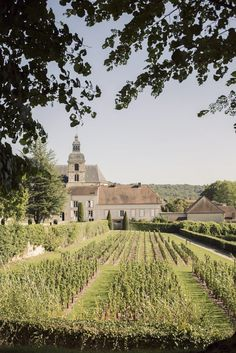 Visiting the Dom Pérignon, the birthplace of Champagne.