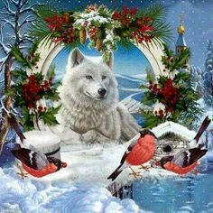 What a stunning scene for a Christmas Card. My heart melts. Wolf Pictures, Animal Pictures, Animals And Pets, Cute Animals, Wolf Life, Beautiful Wolves, Wolf Spirit, Majestic Animals, White Wolf