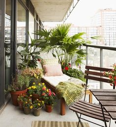 Chaise lounge with surrounding plants