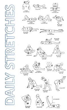 JPEG (legal size paper) of Daily Stretches taken from Book: Stretching by Bob Anderson (pages 102-103)