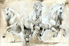Reproductions giclées sur toile - giclée prints on canvas — Elise Genest Painted Horses, Horse Drawings, Animal Drawings, Pretty Horses, Beautiful Horses, Horse Pictures, Art Pictures, Horse Sketch, Watercolor Horse