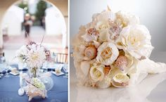 Beach sea shell inspiration