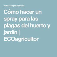 Cómo hacer un spray para las plagas del huerto y jardín | ECOagricultor
