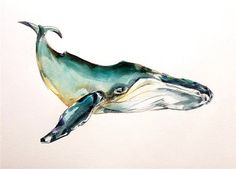 14x12 inch Humpback Whales Original Watercolor by EcoProduct
