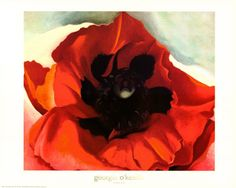 Poppy, Georgia O'Keefe. I had this print in my dorm room in college. O'Keefe inspired a lot of my flower study paintings and their feminine allure.