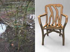 Gavin Munro fait pousser près de 400 meubles vivants : chaises, tables, abat-jours, ou miroirs, tous composés d'une seule et unique pièce de bois.