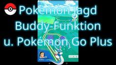 Pokémon Jagd, Buddy-Funktion und Pokémon Go Plus