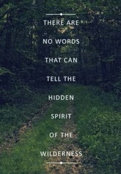 """quote """"there are no words that can tell the hidden spirit of the wilderness"""""""