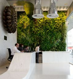 Working space for the employees next to the green wall.