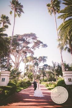 Four Seasons Biltmore Santa Barbara #fssantabarbara #fourseasonsbiltmore #biltmoreweddings #jessicalewisphoto #fourseasonsbiltmoresantabarbara @jessicalewisphotography Ann Johnson Events