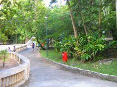 Parque Zoobotânico Arruda Câmara - João Pessoa/PB :: Adventure Turismo