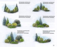 Landscaping near me, landscaping in Tnau, while . - Landscaping near me, landscaping in Tnau, while … -