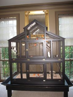 I love the way the canaries sound and look in the brown room and they seem very happy here. Notice the seed catch trough around the bottom of the cage? A very good idea.