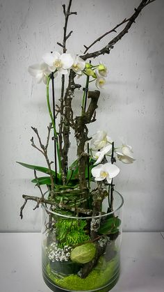 photo Source by Orchid Centerpieces, Orchid Arrangements, Ikebana, Artificial Orchids, Deco Floral, Floral Bouquets, Plant Decor, Flower Vases, Flower Decorations