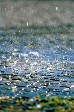 """""""Pensar incomoda como andar à chuva Quando o vento cresce e parece que chove mais.""""  Alberto Caeiro"""