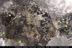 Rhabdophan auf Fluorit ,Bismutinit (gelbe Kugeln),Akanthit ( rechts schwarze Nadeln)  Clara Mine, Rankach valley, Oberwolfach, Wolfach, Black Forest, Baden-Württemberg, Germany Copyright © Stoya