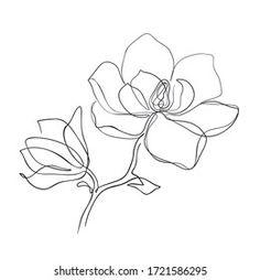 Flower Art Drawing, Flower Tattoo Drawings, One Line Tattoo, Line Art Tattoos, Line Art Flowers, Line Flower, Art Abstrait Ligne, Datum Tattoo, Magnolia Tattoo