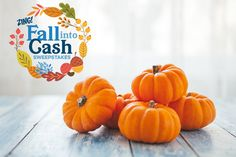 """The more times you enter, the better your chances are of winning!  I entered the @QuickenLoans """"Fall into Cash"""" for my chance to win $5,000! Enter now!"""