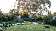 When a native garden is the best solution - realestate.com.au Australian Garden Design, Modern Garden Design, Contemporary Garden, Garden Landscape Design, Backyard Landscaping, Backyard Designs, Landscaping Ideas, Garden Planning, Garden Beds