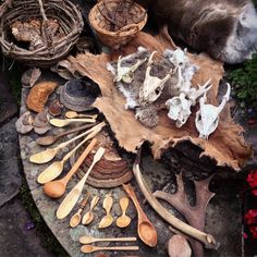 "mcqbushcraft: "" A part of my collection of natural items. Treasures found and made. #bushcraft #naturalitems """