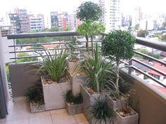 macetitas en el balcon zen
