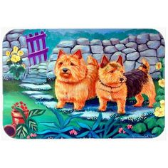 Caroline's Treasures Norwich Terrier Kitchen/Bath Mat Size: 2