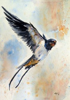 ARTFINDER: Swallow by Kovács Anna Brigitta - Original watercolour painting on high quality watercolour paper. I love landscapes, still life, nature and wildlife, lights and shadows, colorful sight. Thes...
