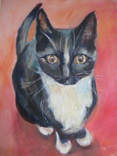 cat / kat /poes, black white by Lida Meines / painting black with acryl Pretty Cats, Pretty Kitty, Dog Art, Superhero, Black And White, Illustration, Artwork, Dogs, Painting