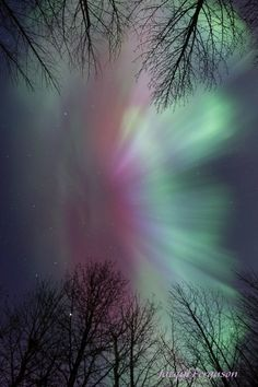 """In Canada last night, the display was even better. Jacqui Ferguson wrote: """"Incredible auroras tonight near Saskatoon, SK! With colours all over the sky, it was hard to know which way to shoot!"""""""