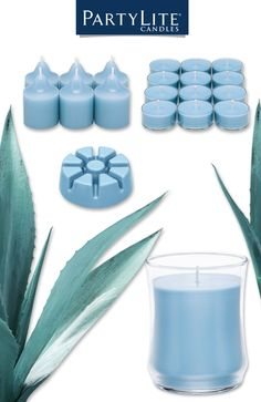 Energize your senses with fresh with an exhilarating explosion of fresh and watery notes with a touch of jasmine and musk. Introducing Blue Agave from PartyLite, one of nine new scents for Winter/Spring 2016.
