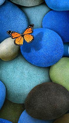 Orange Butterfly On Blue Stones Wallpaper for Android, iPhone and iPad Iphone 5s Wallpaper, Wallpaper Backgrounds, Mobile Wallpaper, Iphone Wallpapers, Wallpaper Designs, Desktop Backgrounds, Wallpaper Ideas, Galaxy Wallpaper, Orange Butterfly
