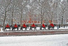 Horse Guards in the Snow  February 2009  We had the most snow for nearly 20 years in February 2009. We even had one day where there were no buses and only one tube line running!  (hangs head in shame, we are the laughing stock of the world when it comes to snow)