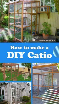 Diy Cat Enclosure, Outdoor Cat Enclosure, Outdoor Cat Cage, Outdoor Fun, Catio, Cat Wall Furniture, Cat Hacks, Lots Of Cats, Bad Cats