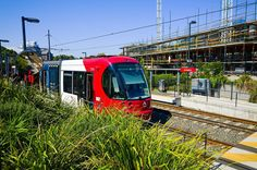 Lightrail train at a station in Sydney Australia.  #Sydney #Australia #lightrail #train #rail #station #sunny #infrastructure #transport #professionalphotographer #photographer #sunny #commute #beautiful #sky #arlington #dulwhichhill