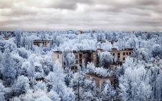 """Chernobyl: A Stalker's Paradise"" – Photographer Vladimir Migutin Captures The Chernobyl Exclusion Zone In Infrared – Design You Trust"