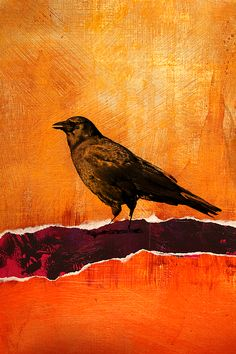 Watching Raven Abstract Art by Nancy Merkle