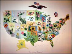 Map over the #USA with flowers - are these state flowers?