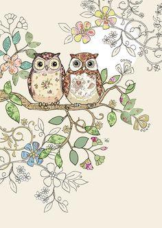 Bug Art B006 Owl Pair greetings card