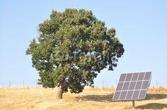 Solaranlagen Solar Panels, Outdoor Decor, Pictures, Solar Installation, Sun Panels, Solar Power Panels