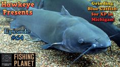 Fishing Planet - Ep. #64:  Grinding Blue Catfish for XP in Michigan!